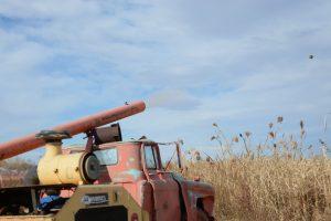 The pumpkin launcher at Bartels Farm shooting a pumpkin out.