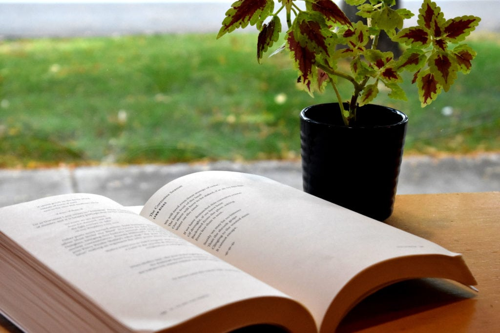 open book next to a plant on the desk